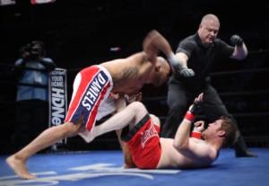danielsknockout2-300x207.jpg